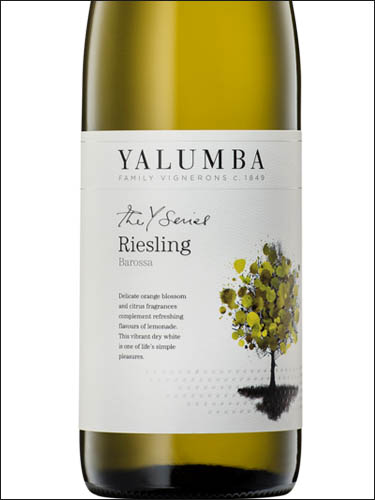 фото Yalumba The Y Series Riesling Ялумба Серия Y Рислинг Австралия вино белое