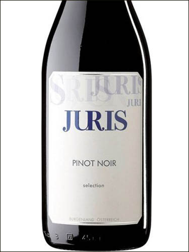 фото Juris Pinot Noir Selection Qualitatswein trocken Burgenland Юрис Пино Нуар Селекшн (Селекцион) Бургенланд Австрия вино красное
